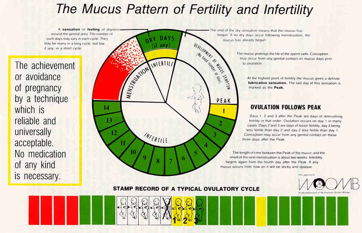 Natural Family Planning Vs Rhythm Method